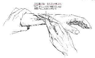 長母指外転筋腱の検査